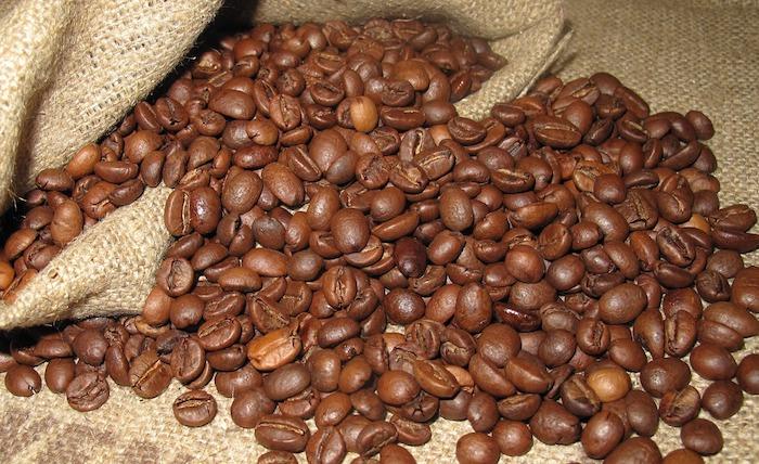 Arabica coffee beans in a sack.