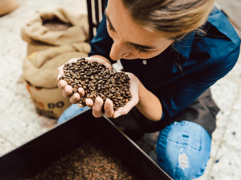 Barista smelling coffee beans.
