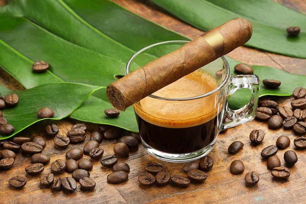 Best Coffee Infused Cigar