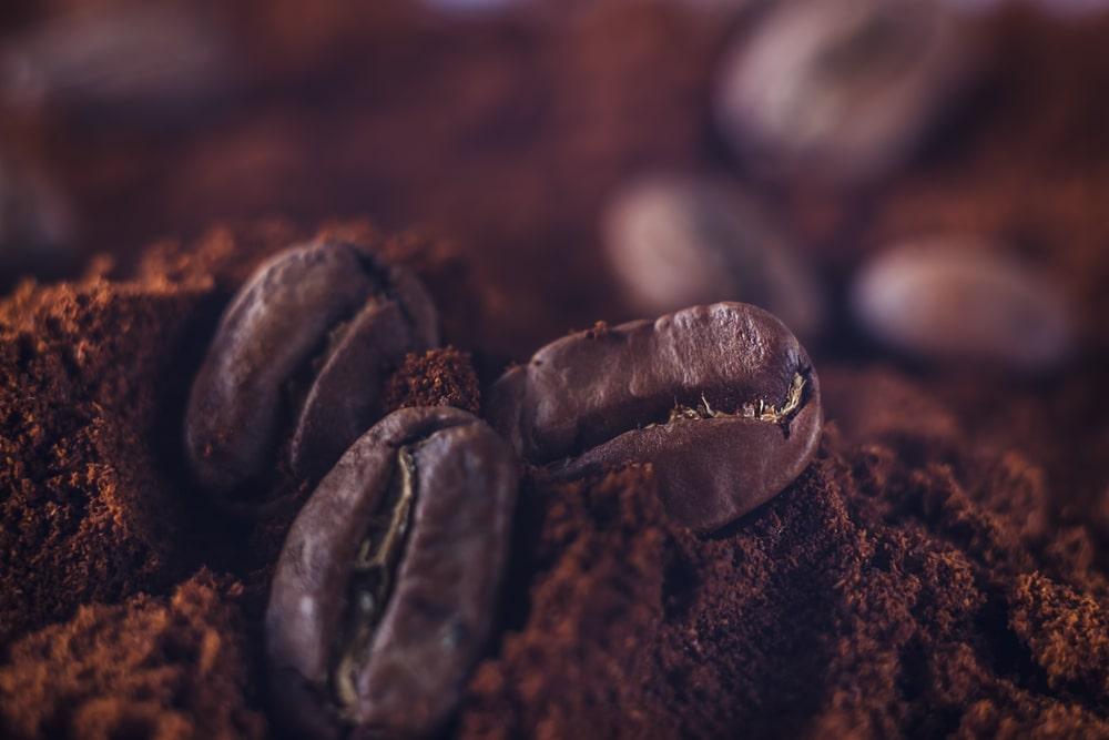 A close up of a coffee bean