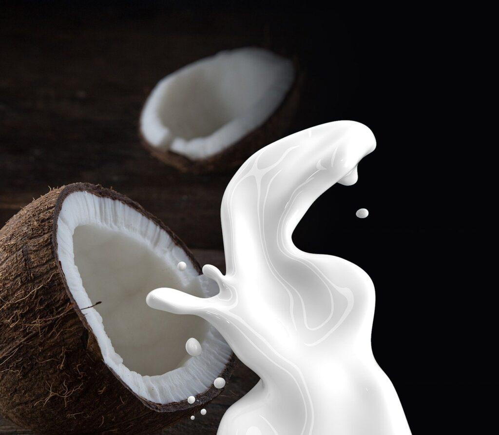 coconut milk, milk, coconut