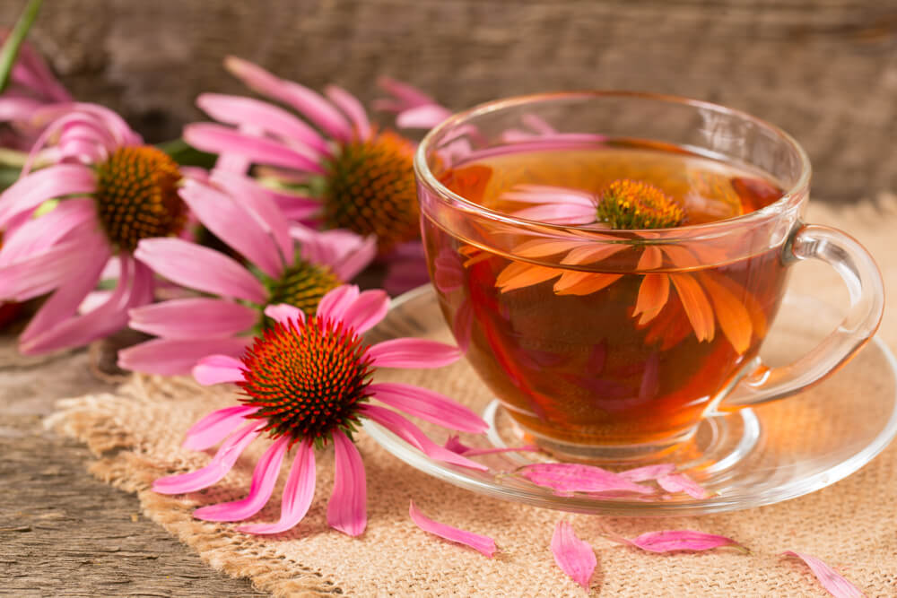 best tea to drink when sick - cup of echinacea tea on old wooden table
