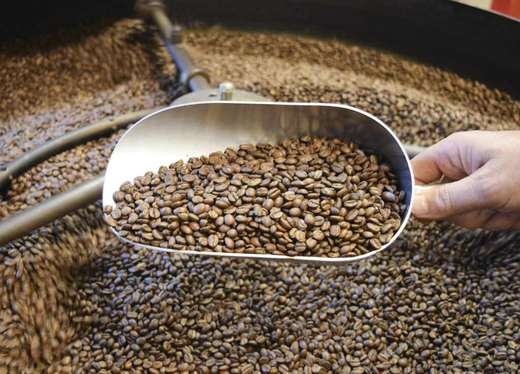why are coffee beans roasted - taking a full dip of coffee beans