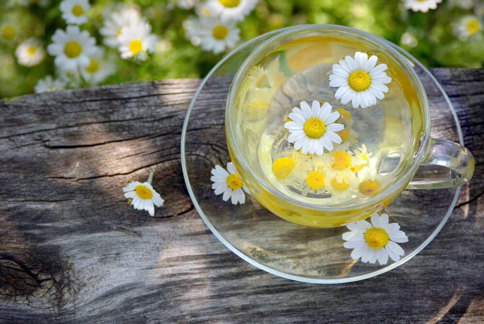 cup of chamomile tea nesting at a top of a wood