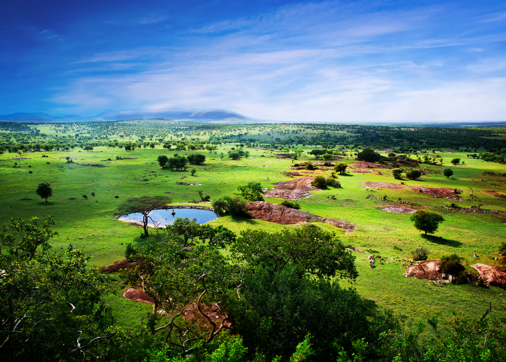 a place somewhere in Tanzania